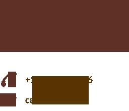 Raisa's logo